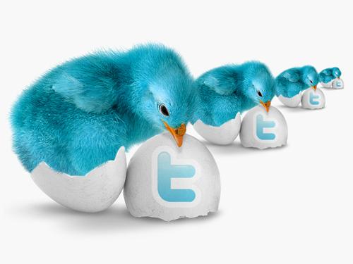 Набор иконок голубых цыплят