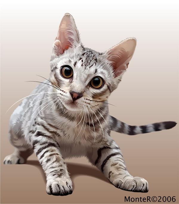 иллюстрация кошки