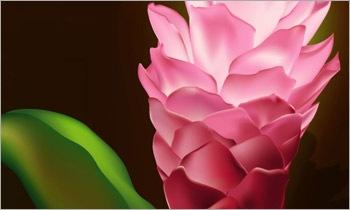 туториал создания красивого цветка