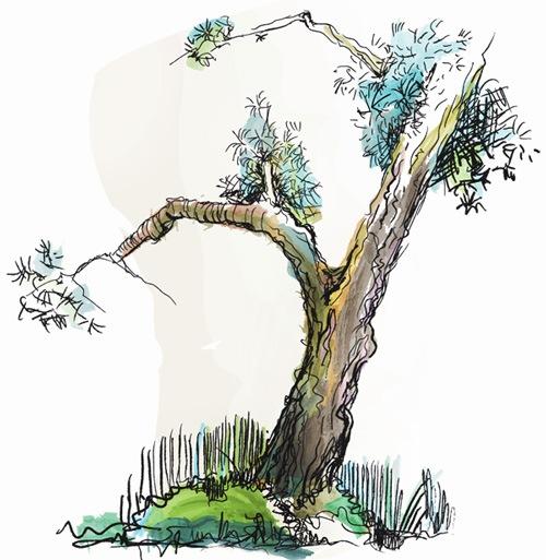 Дерево дудл