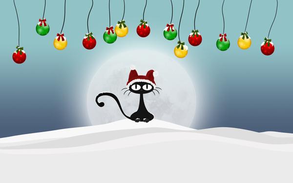 Кошкин новый год