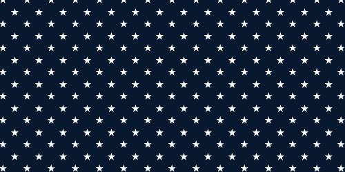 Звезды и полосы: патриотические кисти