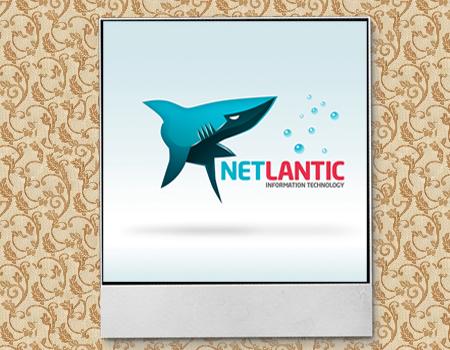 акула в логотипе