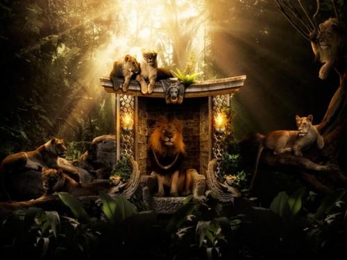 львы в джунглях