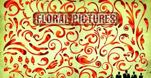 Изображения цветов