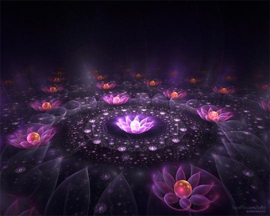 Пруд жемчужных цветов