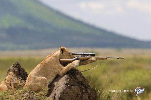 Охота на еду