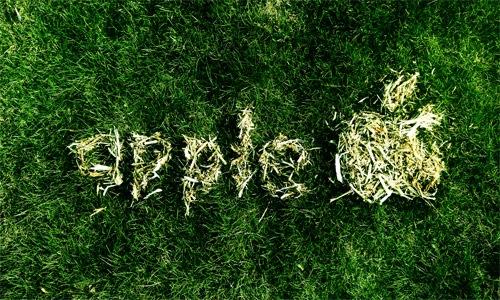 Apple на траве