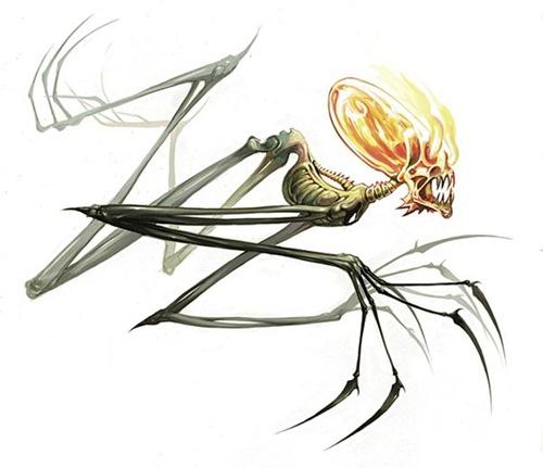 иллюстрация скелета