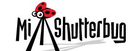 логотипы-с-насекомыми