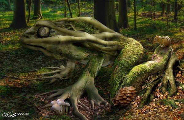 Лягушка из дерева