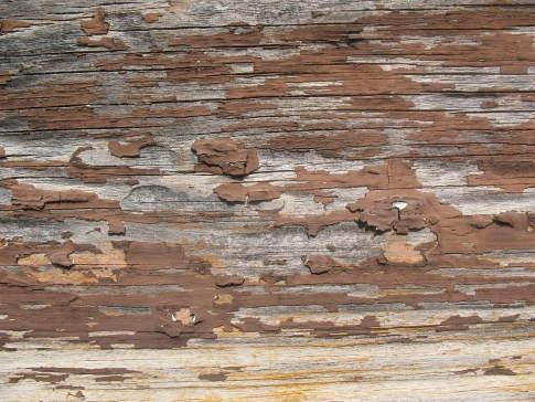 раслоившаяся текстура дерева