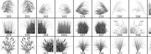 Разнообразная трава