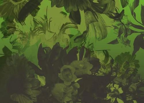 Кисти цветов