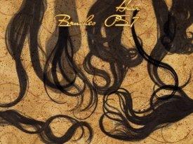 Кисти-волосы