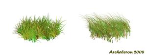 4 кисти травы