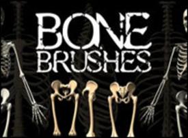 Кисти костей и скелетов