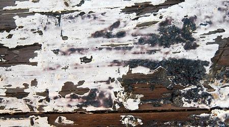 Текстура дерева с облезшей краской