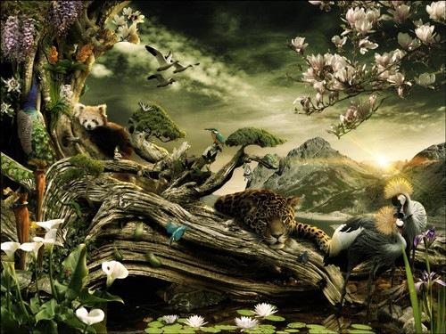 Природный оазис