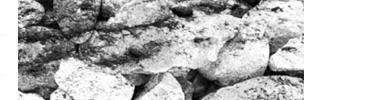 Кисти камней в высоком разрешении