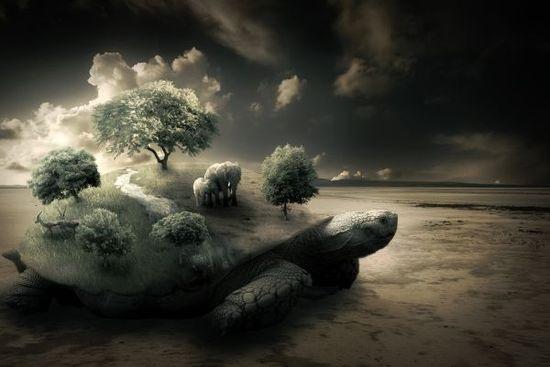 Изображение с сюрреалистичной черепахой