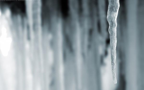 Приветствие зимы
