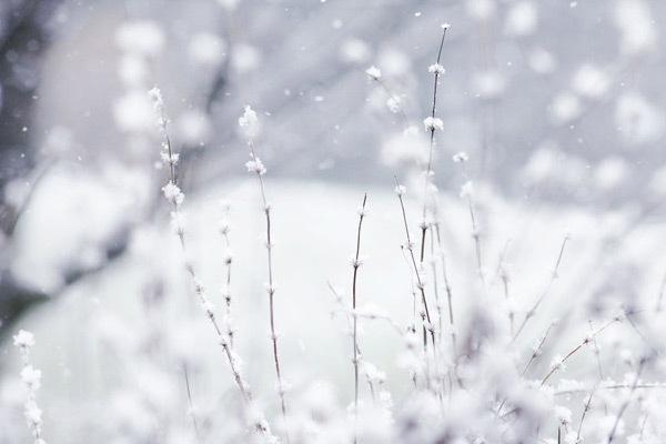 Зимняя чудесная страна