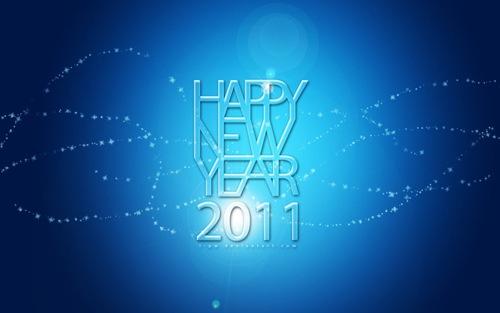 Яркая Новогодняя ночь 2011