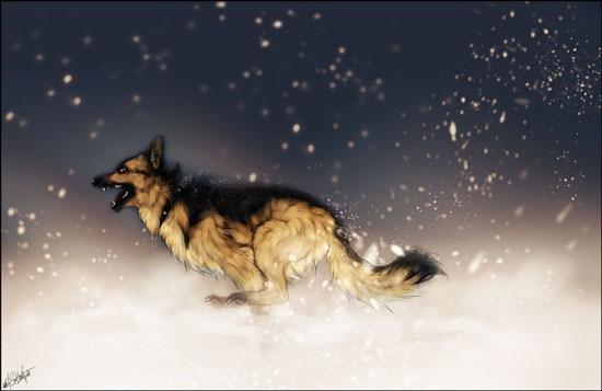 Преследующие снежинки