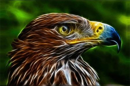 Фрактальный орел