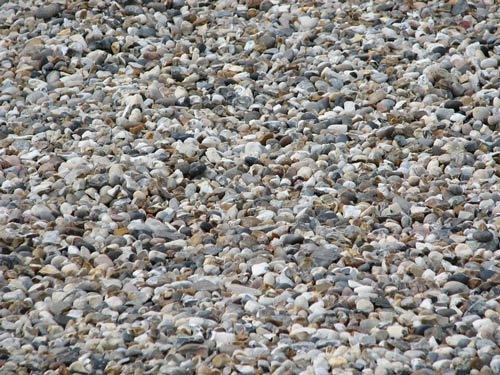 Множество камней