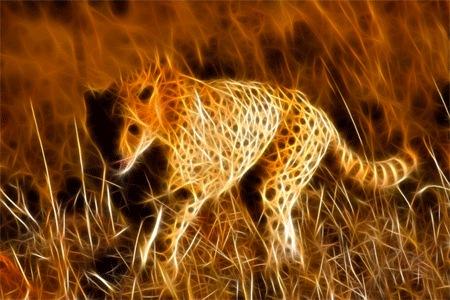 Фрактальный гепард