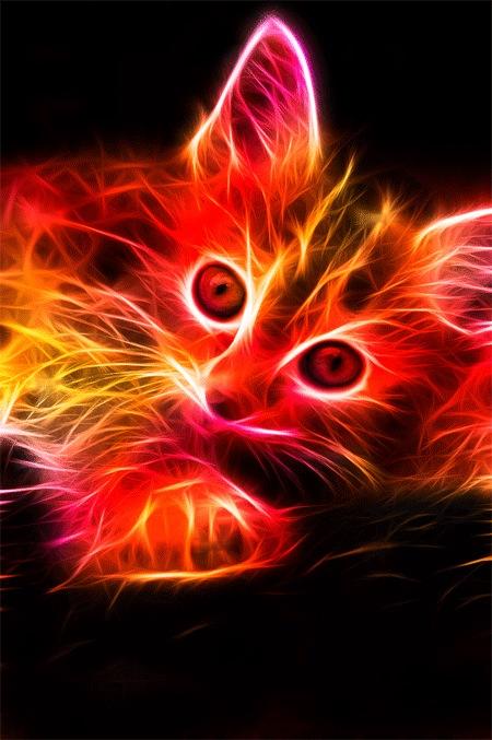 Фрактальный котенок