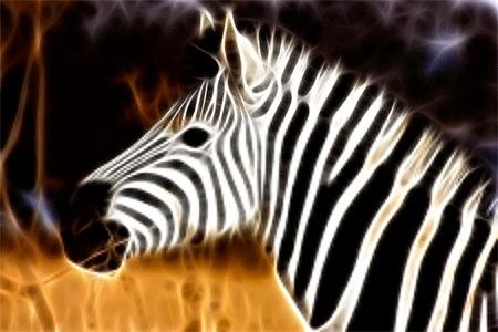 Фрактальная зебра