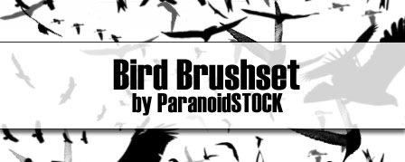 Набор кистей птиц