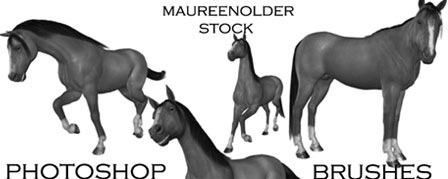 Кисти коней