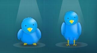 Твиттер птички