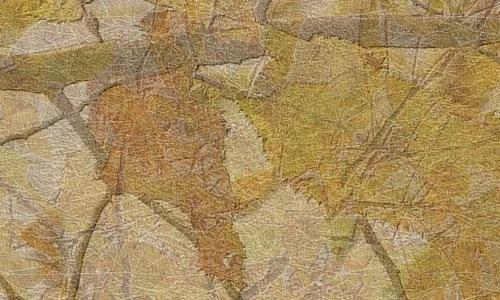 Прессованная текстура из листвы