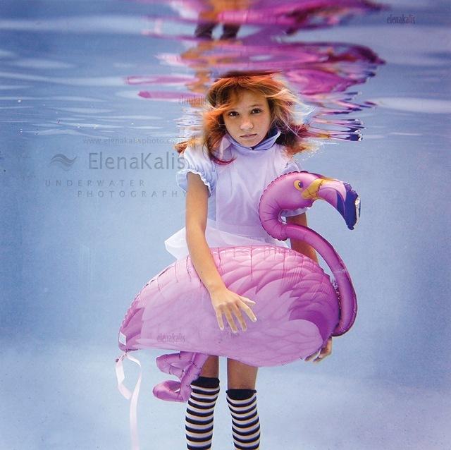 Алиса и фламинго