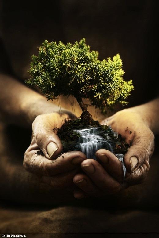 природа в руках