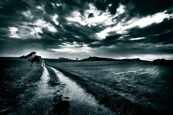 пустынное поле
