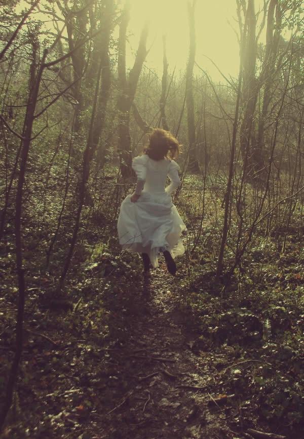сквозь лес
