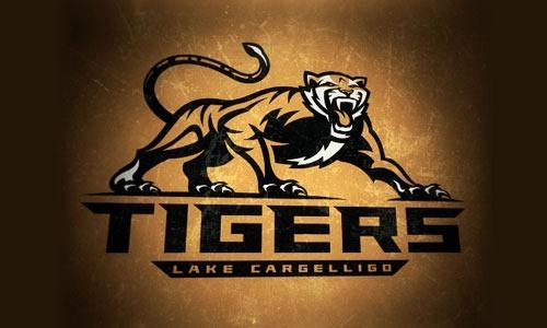 команда тигров