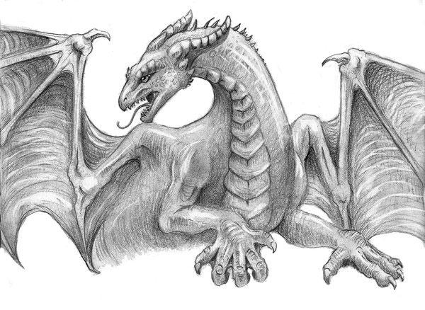 картины драконов: