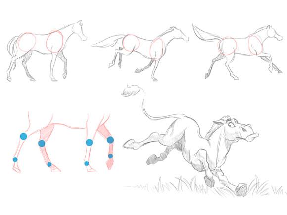 анатомию лошади и проверим