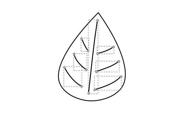 detail the leaf