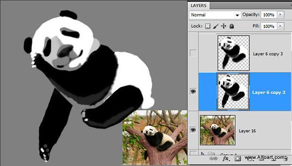 Cute baby panda & Bamboo text effect Pandas and realistic fresh and green bamboo plant illustration
