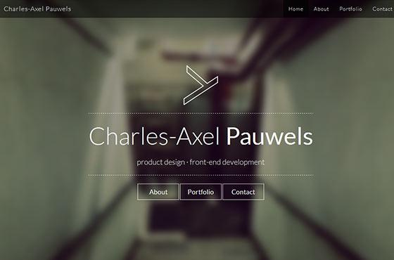 Image vs. Video Background in Web Design - Charles-Axel Pauwels Design Portfolio
