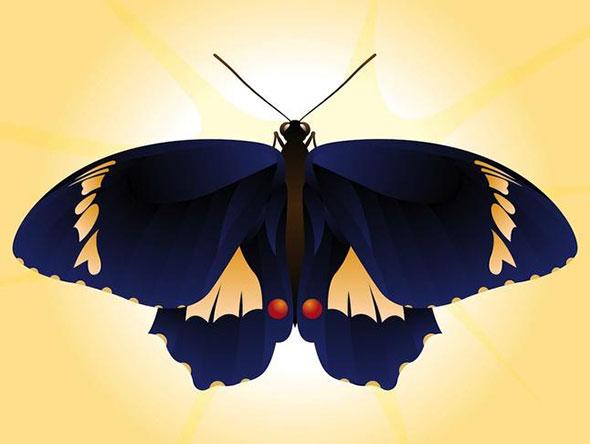 Бесплатные векторные бабочки