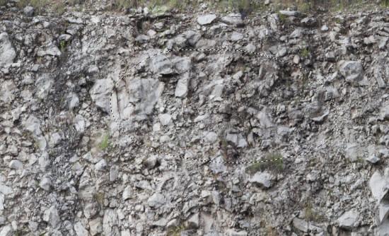 1 sel rock